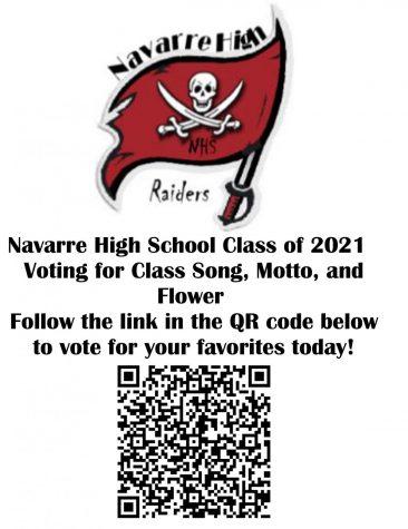 Senior Voting Flyer