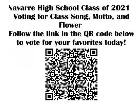 Senior voting qr code